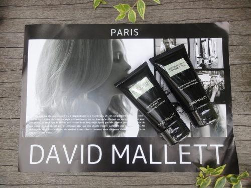 ダヴィッド・マレ(DAVID MALLETT)DSC012310001