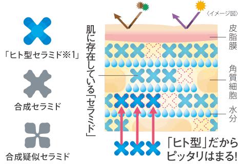 小林製薬ヒトミドヒト型セラミドpic11