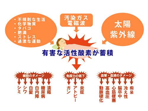 ドクター水素水活性酸素suisosui-kasseikouso