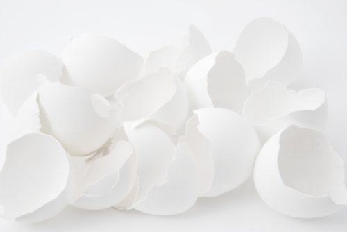 アルマード 卵殻膜