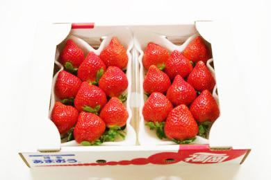 ふるさと納税 福岡県大木町 あまおういちご1箱(2パック)