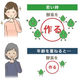ファイテン イミダ・酵素