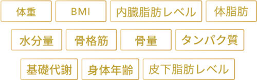 Finc fit 高性能体組成計(10,584円相当)