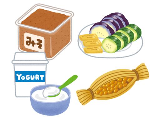発酵食品 イラスト