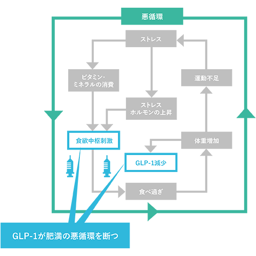 シゲトウクリニック glp-1