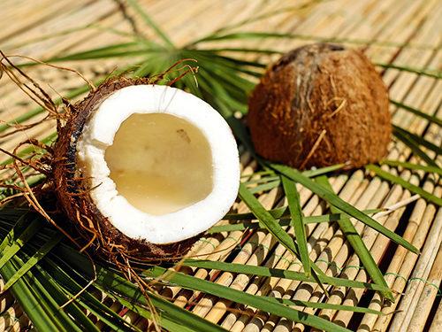 coconut ココナッツ