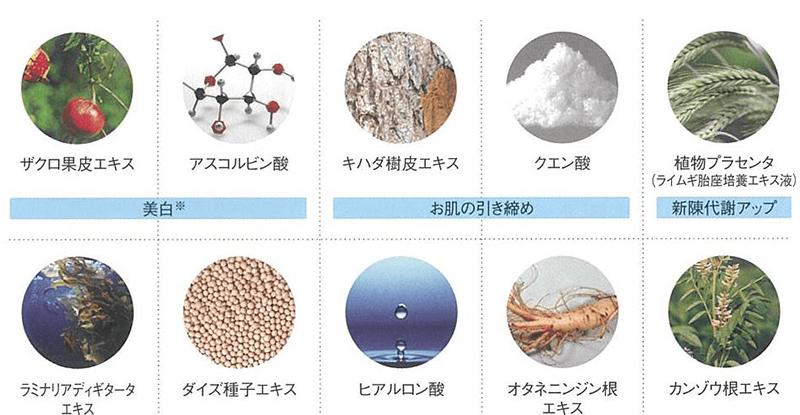 フェヴリナ ナノアクア 炭酸パック