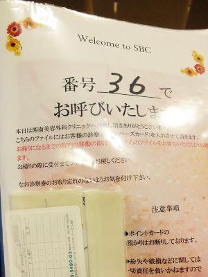 DSC08847-(1)